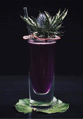 Violet x Dragonfruit by Rick Joore