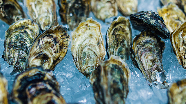 Port Charlotte pairing with oysters Southern Rock
